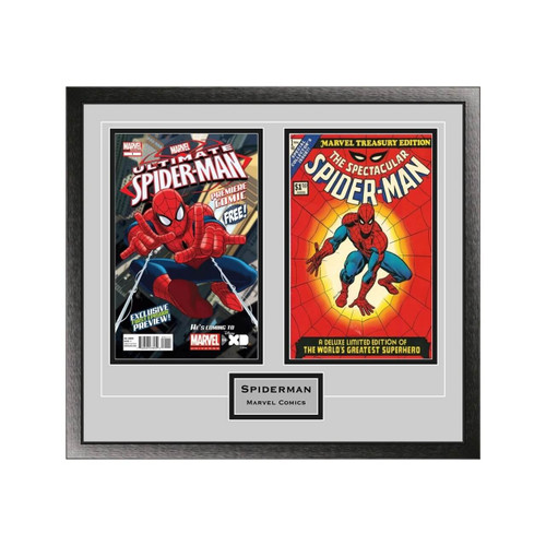 Double Comic Book Frame with Engraving in Classic Moulding