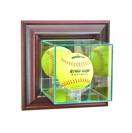 Wall Mounted Softball Display Case