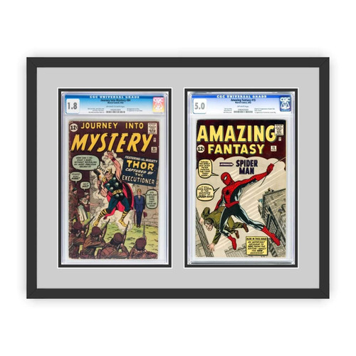 Double Graded Comic Book Frame