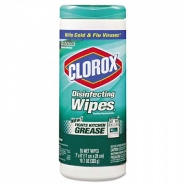 Clorox Professional    CLO 01593