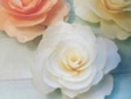 A'marie's Bath Flower Shop