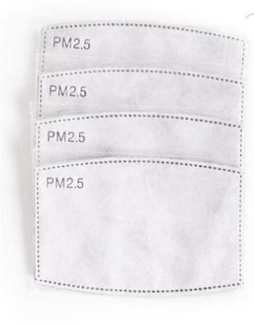 Filtros de Carbón Activado PM2.5 -Bolsa 5 unidades