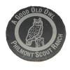 Slate Owl Coaster