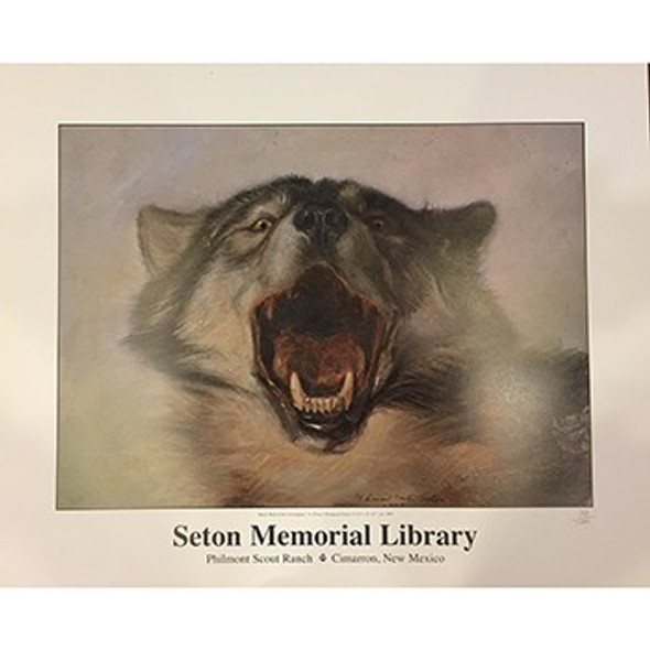 Ernest Thompson Seton Black Wolf Poster