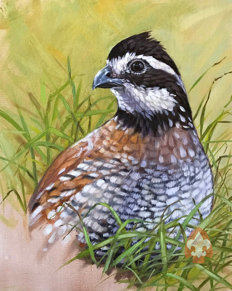 Bobwhite print on canvas