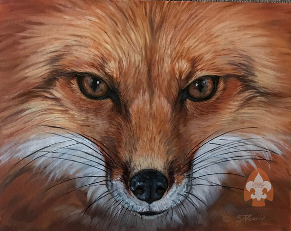 Fox on Large Canvas
