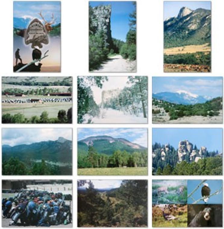 Postcards, 12 Pack
