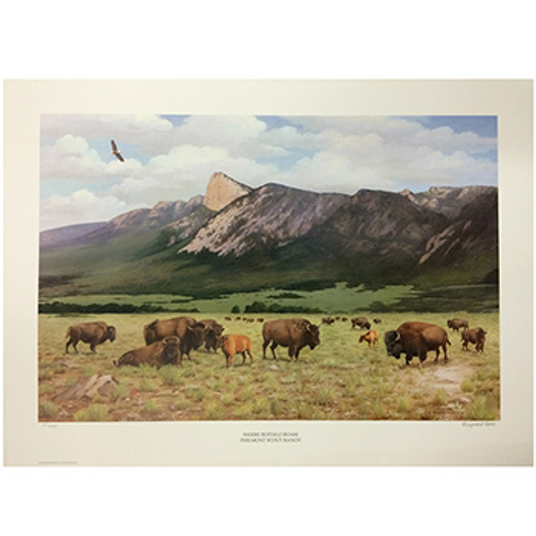 Where Buffalo Roam Poster