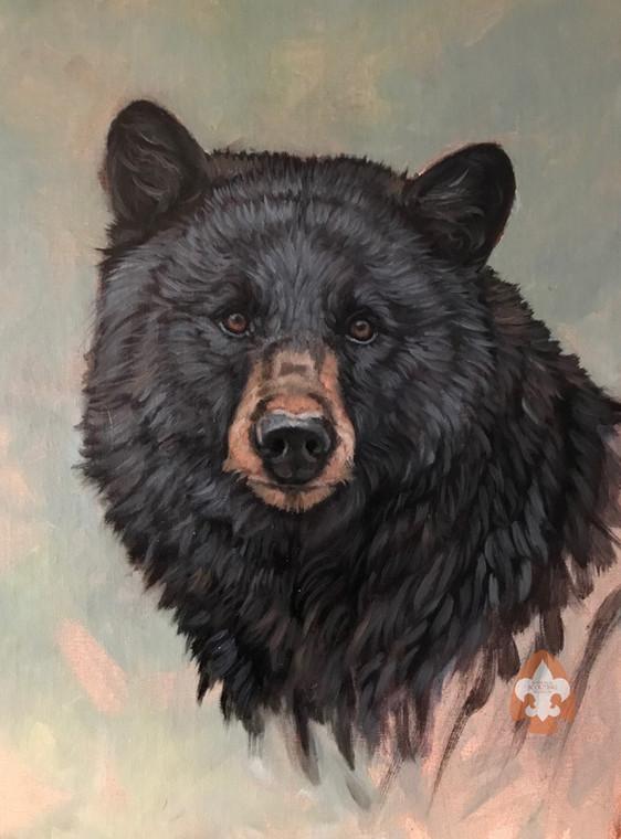 Bear print on canvas