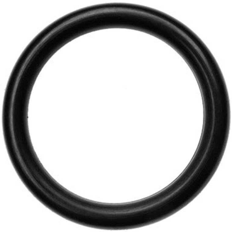 MSR Fuel Bottle O-Ring