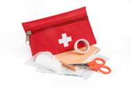 Homeopathy for First Aid - The Most Important Remedies and How to Use Them