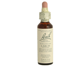 Larch 20ml