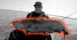 Kayak Fishing for Big Blue Cats