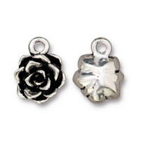 Succulent Charm, Antiqued Silver Plate, 20 per Pack