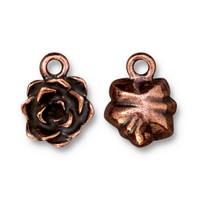 Succulent Charm, Antiqued Copper Plate, 20 per Pack
