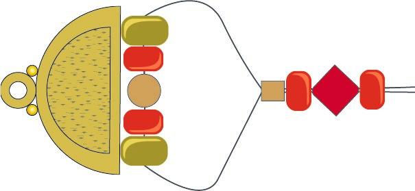 tsdn-fig2-l.jpg