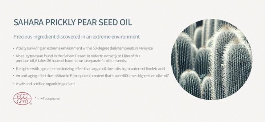Huxley Essence ; Oil-like, Essence Like 03