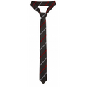 Pingle Academy  School Tie