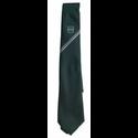 de Ferrers Academy Upper Tie
