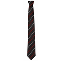 Pingle Academy School Clip On Tie
