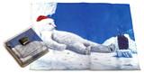 Holiday Christmas Theme Cleaning Cloth, Polar Bear