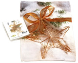 Holiday Christmas Theme Cleaning Cloth, Golden star