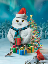 Holiday Christmas Theme Cleaning Cloth, Holiday hoot