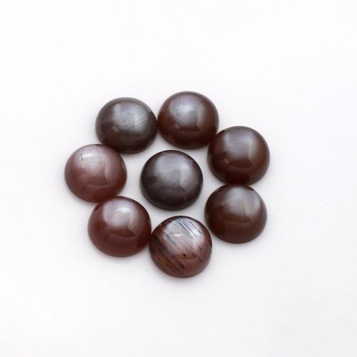 Chocolate Moonstone Round Cab  10X10 mm 8 Piece 30.88 Carats GSCCM005