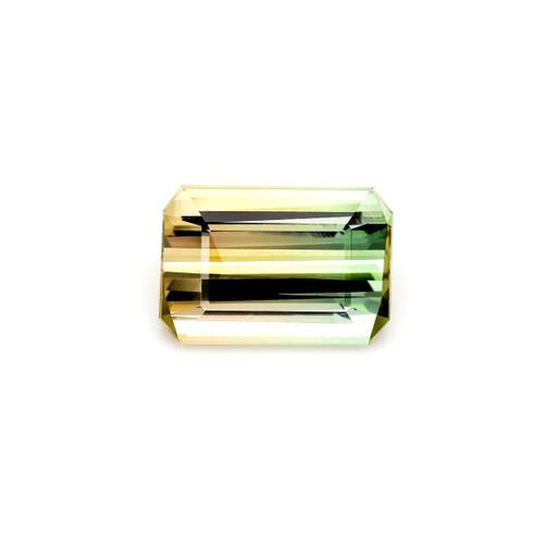 Bi-Color Tourmaline Octagon Faceted 18 x 14 mm 32.62 Carat GSCTO124
