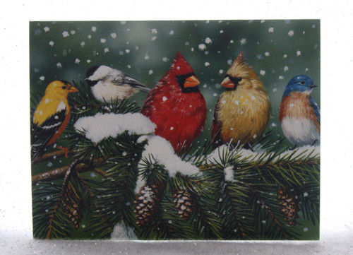 Birds on a branch Christmas Cards