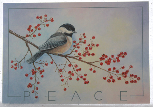 May peace be your....