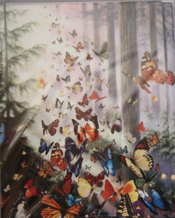 Butterflies Note Cards