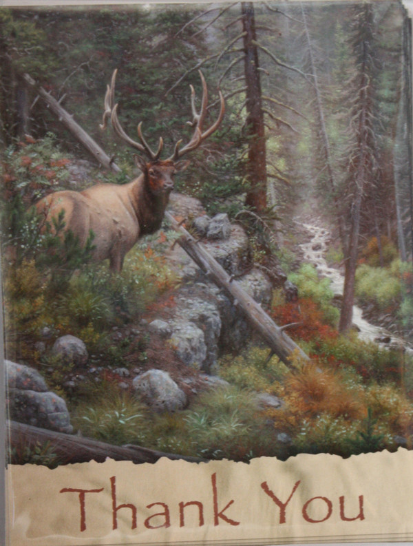 """""""Buck"""" - Thank You Note Cards"""