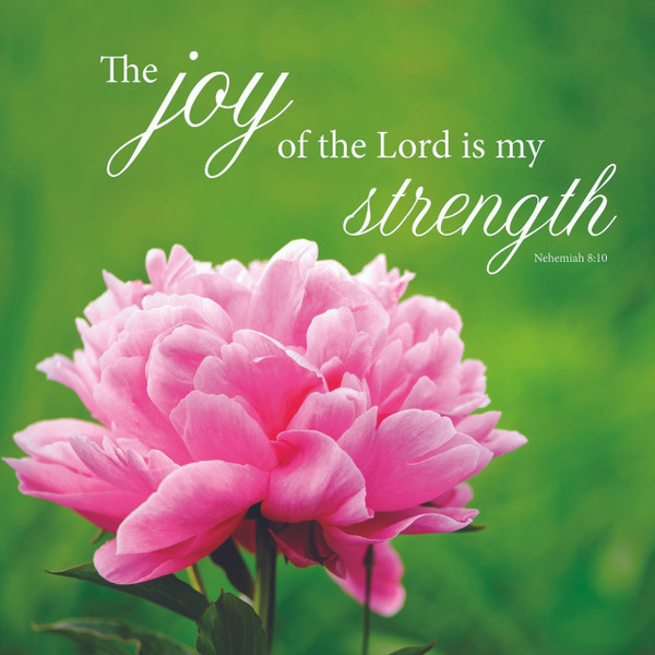 Joy & Strength