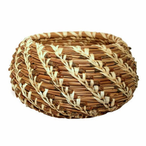 Coiled Basket Kit - Pine Needle