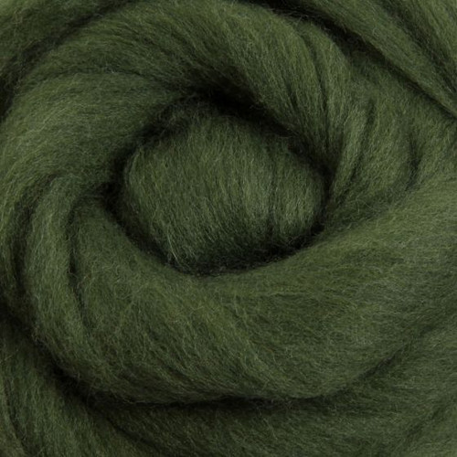Ashford Dyed Merino Wool Top - Fern Green