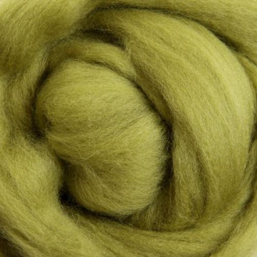 Ashford Dyed Merino Wool Top - Beansprout (Lima Bean)
