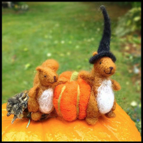 Woolpets Starter Kit - Squirrel
