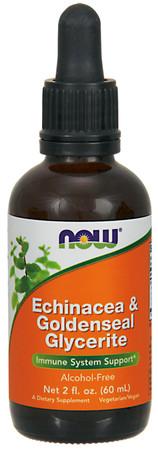 Now Echinacea & Goldenseal Glycerite Bottle