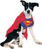 Superman Dog Costume Lg