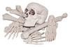 Bag Of Bones - 768514