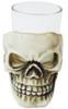 Skull Shot Glass 3.5in