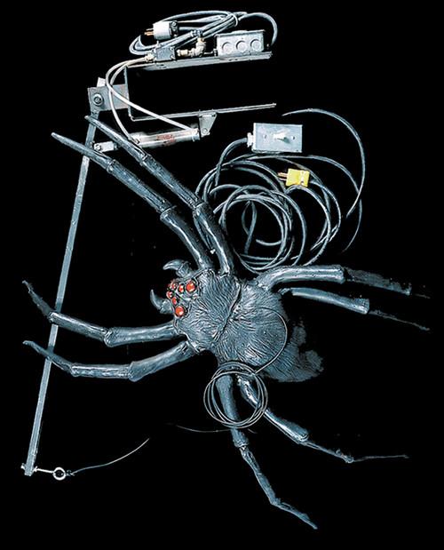 Attack Spider