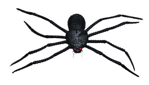 Spider 11 Inch