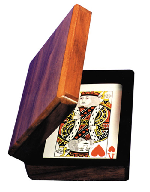 Aladdins Card Case Enardoe