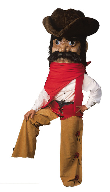 Cowboy Costume  As Pictured