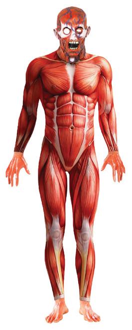 Anatomy Man Medium Adult 38-40