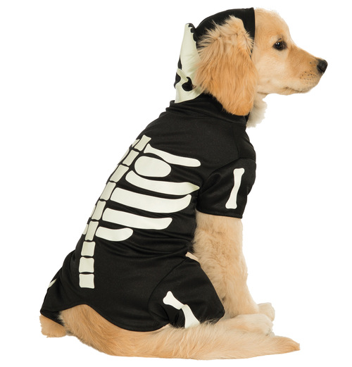 Pet Costume Bones Glows Xl