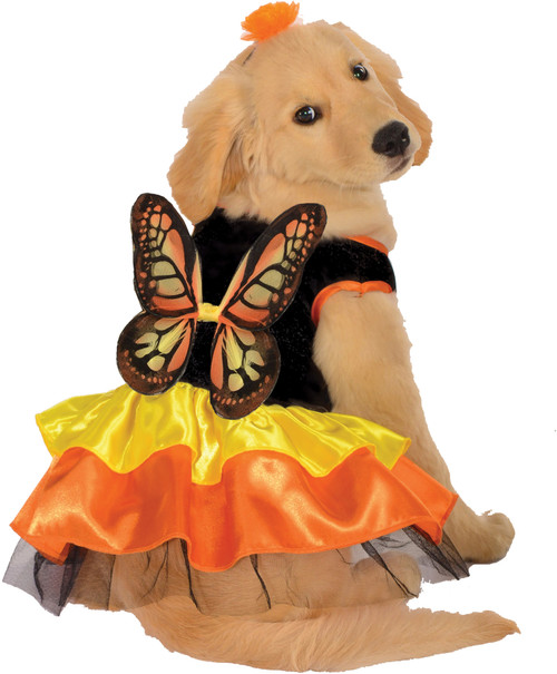 Pet Costume Butterfly Large