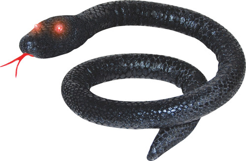 Black Snake W Light Eyes